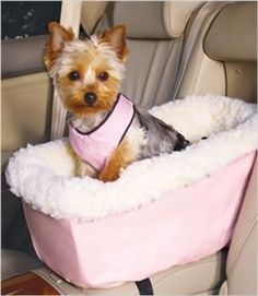 Pet car seat, Console Lookout straps securely to the car console while the safety harness (sold separately) keeps your pet close, but comfortably contained. Faux lambswool interior for snuggling comfo Yorkies, Dog Car Seats, Puppy Car Seat, Dog Carrier, Pet Carriers, Training Your Dog, Happy Dogs, Dog Bed, Small Dogs
