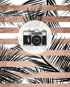 Apple Wallpaper Iphone, New Wallpaper, Wallpaper Quotes, Logo Ig, Rose Gold Highlights, Instagram Logo, Kindergarten Art, Highlighter Makeup, Instagram Story Template