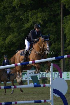 Paarden springen / Concours Hippique