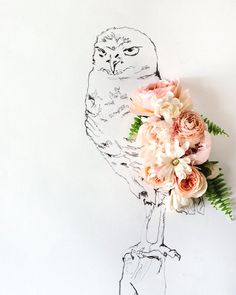 Owl and Flower Photograph