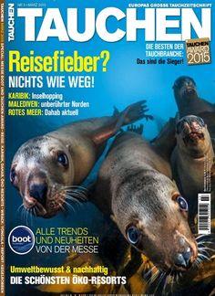 Fisch??? Ohhhh ja! Seelöwen können den Hundeblick auch. Gefunden in: TAUCHEN, Nr. 3/2015