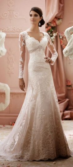 Awesome Winter Wedding Gown For Your Perfect Wedding - David Tutera WInter Wedding Dresses - Wedding Robe, Mod Wedding, Wedding Attire, Wedding Gowns, Wedding Blog, Wedding Ideas, Trendy Wedding, Ballroom Wedding, Wedding Cakes