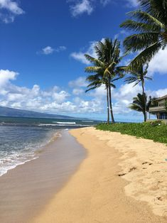 Here are 3 questions to help you decide where to stay on Maui. Choose the perfect place to suit your own personal travel style. Tips from a local insider. Maui Hotels, Maui Resorts, Hotels And Resorts, Maui Honeymoon, Maui Vacation, Maui Accommodation, Travel Photos, Travel Tips, Maui Activities