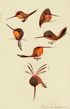 Sketchin Thoughts: The Art of Melissa van der Paardt: Rufous Hummingbirds