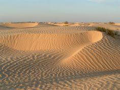 Sahara near Douz, Tunisia