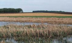 USDA Climate Change Adaptation Plan