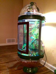 Chameleon cage Bio bubble
