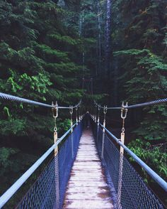 Drift creek falls hike Oregon Soul Searching Day A place you'd like to move or visit. The culture/amount of nature there is wonderful. Oregon Road Trip, Oregon Trail, Oregon Hiking, Portland Oregon, Visit Portland, Salem Oregon, Oregon Coast Hikes, Oregon Camping, Oregon Beaches