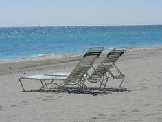 The Beach.my home Dania Beach Florida, Hollywood Beach, Beach Pool, Rental Apartments, Ideal Home, Sun Lounger, Places To See, Outdoor Chairs, Condo