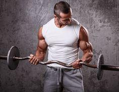 Trening na biceps w domu. Jak ćwiczyć biceps z gryfem i hantlami? - Fabryka Siły