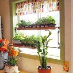 The New Window Garden Window Mount Plant Display Outdoor Gardens, Indoor Outdoor, Outdoor Living, Indoor Gardening, Window Inserts, Garden Windows, Al Fresco Dining, Garden Planters, Lawn And Garden