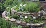 The herb snail creates a nice natural ambience - Garten - Best Garden Ideas Gardening Books, Container Gardening, Green Garden, Herb Garden, Potting Tables, Garden Types, Rooftop Garden, Healing Herbs, Outdoor Furniture Sets