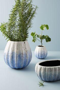 Slide View: 7: Glazed Indigo Pot