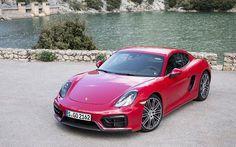 Porsche Cayman GTS | TopGear.nl