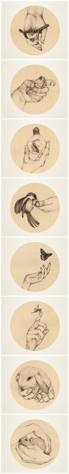 Drawing hand holding something artists ideas Illustrations, Illustration Art, Ap Art, Cool Drawings, Animal Drawings, Art Studios, Oeuvre D'art, Art Lessons, Art Inspo