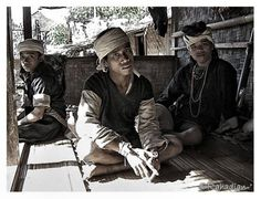 The Baduy (or Badui), who call themselves Kanekes, are a traditional community living in the western part of the Indonesian province of Banten.