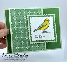Stamping up cards - Sneak Peek of New Products Coming Next Week! – Stamping up cards Fun Fold Cards, Folded Cards, Shaped Cards, Stamping Up Cards, Bird Cards, Fall Cards, Homemade Cards, Making Ideas, Thank You Cards