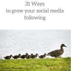 Learn 31 Ways To Grow Your Social Media Following. There are simple techniques you can use to grow your following.