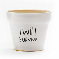 'I Will Survive' Plant Pot. Maybe this will be motivation for my succulents. They keep dying. - Black thumb remedies: Hard to kill houseplants and pretty pots to put them in
