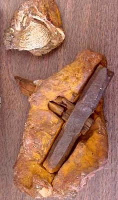 Half billion year old hammer embedded in rock that formed 400 MILLION years ago ~ Archaeologists analysed and dated it. The rock encasing the hammer was dated to more than 400 million years old. The hammer itself turned out to be more than 500 million years old. A section of the wooden handle had begun the metamorphosis into coal. The hammer's head, made of more than 96% iron, is far more pure than anything nature could have achieved without assistance from relatively modern smelting…
