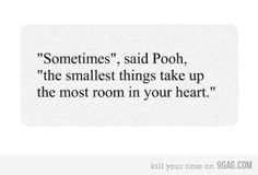 """Sometimes, the smallest things take up the most room in your heart."" - Pooh Bear <3"