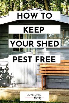 How to create and maintain an outdoor shed free from pests bugs and insects all year round. Perfect ideas for maintaining and keeping your shed pest free bug free. Allotment Shed, Free Shed, Potting Sheds, Uk Homes, Outdoor Sheds, Bugs And Insects, Garden Spaces, Seasonal Decor, Garden Design