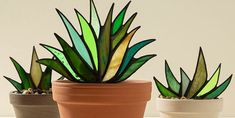 succulent stained glass pattern - Google Search Floral Foam, Stained Glass Projects, Clay Pots, Window Sill, Cool Patterns, Looking Gorgeous, Shades Of Green, Biodegradable Products, Succulents