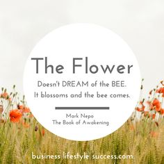 The flower doesn't dream of the bee. It blossoms and the bee comes. @blsmotivational