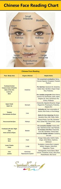 Chinese Facial Reading Chart - Learn whats going on inside your body by reading your face: http:chinese-face-reading Natural Cures, Natural Healing, Natural Face, Chinese Face Reading, Health And Beauty, Health And Wellness, Health Tips, Reading Charts, Salud Natural