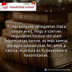 Funny Quotes, Life Quotes, Did You Know, Book Worms, Everything, Fun Facts, Thoughts, Humor, Reading