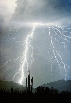 Beautiful Southwest desert landscape with a saguaro cactus and lightning striking down rom the heavens. Buy this fine art lightning photography print in all sizes. Original shot on film , processed with a light texture. Ride The Lightning, Thunder And Lightning, Lightning Strikes, Lightning Storms, Weather Cloud, Wild Weather, Tornados, Thunderstorms, Fine Art Photography