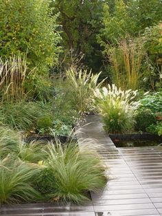 The Uncluttered Life in London  Remodelista Back Gardens, Small Gardens, Outdoor Gardens, Back Garden Design, Garden Landscape Design, Big Garden, Garden Care, Easy Garden, Garden Beds