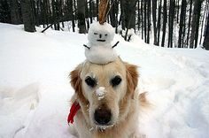 why is there a snowman on my head?