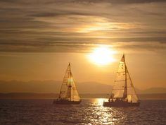 Google Image Result for http://artofweightlessness.files.wordpress.com/2012/06/sailboats.jpg