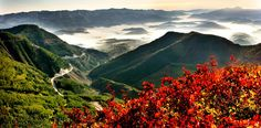 Paisajes de las Montañas Liupan, en Ningxia - http://www.absolut-china.com/paisajes-de-las-montanas-liupan-en-ningxia/
