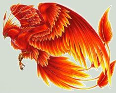 Phoenix a golden red bird that consisted of ony 1 animal as only risultati immagini per phoenix bird harry potter voltagebd Gallery