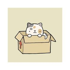 Cat in a Box by nutandbee