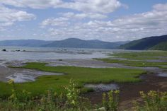 Rimouski, Québec, Canada Fitspiration, Canada, Nature, Travel, Paisajes, Places, Mountains, Cities, Voyage