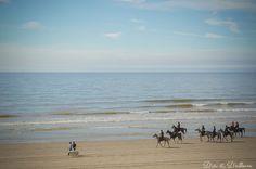 Escapade à Fort-Mahon-Plage | D'ICI & D'AILLEURS Photography