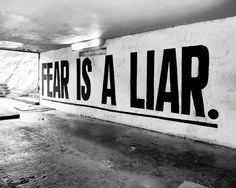 Fear is trying to keep you from reaching your true potential. Push through fear. Tell it to shut up, that you're done listening to its lies. Now go do something amazing with your life!  Via +Michele Messenger on Google +