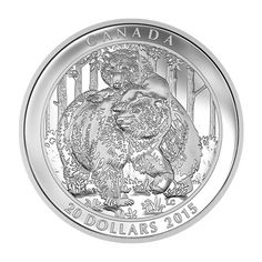 Canada 20 Dollars Silver Coin 2015 Grizzly Bear: Togetherness Grizzly Bear series As spring returns to the Canadian landscape, the . Mint Coins, Silver Coins, Spiritual Symbols, Proof Coins, Majestic Animals, Canadian Artists, Coin Collecting, 1 Oz, Thoughtful Gifts