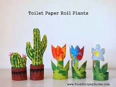 make toilet paper roll cacti and tulip flowers craft
