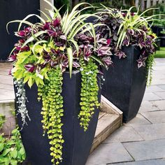 Wicked 50 Incredible Home Front Porch Flower Planter Ideas https://freshouz.com/50-incredible-home-front-porch-flower-planter-ideas/