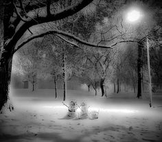 """SBC's image, The Heart of Winter is """"A random capture of a snowman family while walking around in the beginning of the first blizzard February 2010. It was one of many snow creations found while photographing that winter night."""""""