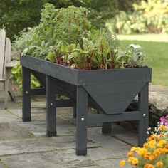 VEGTRUG™ PATIO GARDEN... grow a vegetable garden in a really small space!