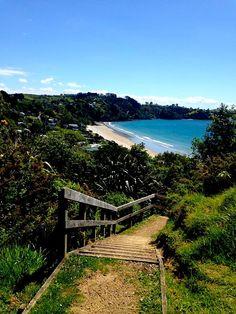 Oh Waiheke Waiheke Island, New Zealand, Vineyard, Things To Do, Explore, Places, Summer, Outdoor, Style