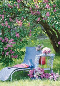 I can just about smell those lilacs- beautiful color and what a relaxing spot!