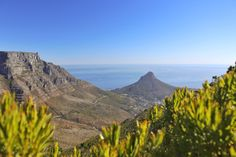 Probably one of the best hikes i've done up Table Mountain. #capetownhikes #hike #nature #devilspeak #ilovecapetown #captureson #travel #adventuring #goexplore #goplaces