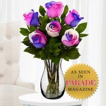 Tri-Colored Roses | Pink, Purple and White Roses | Colorful Roses | TheUltimateRose.com