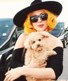 Love Lady Gaga's adorable Fozzi dog